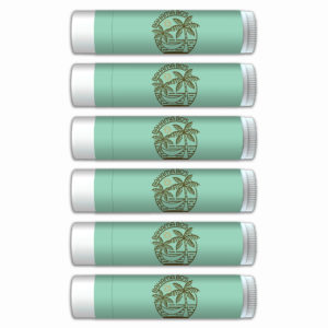 Lip Balm Smooth Mint Flavor, with SPF 15, 6-Pack